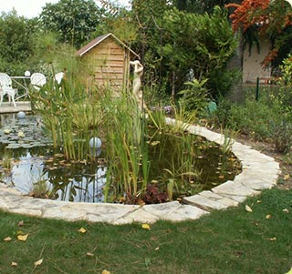 Paysagiste à Toulouse : conseils paysagers, création de jardins