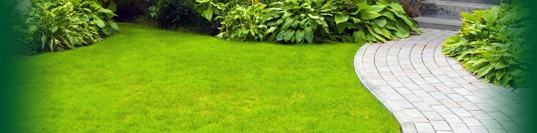 Monsalve paysagiste toulouse espaces verts cr ations for Entretien jardin montauban